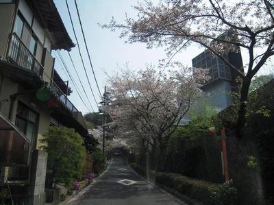 20090405-003.jpg
