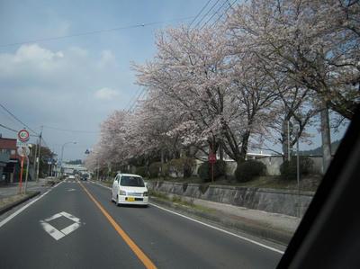 20090405-004.jpg