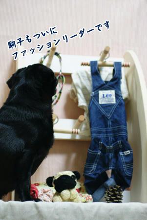 7hagaraku.JPG