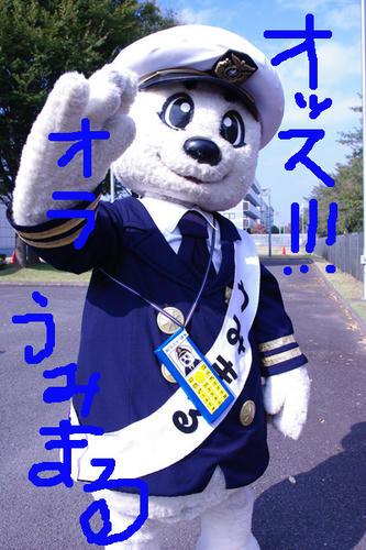 IMGP336211.jpg