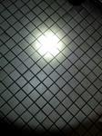 SN3D07450003.jpg