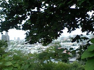 藻岩山麓通りから見た札幌