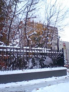 冬景色、北海道大学植物園付近