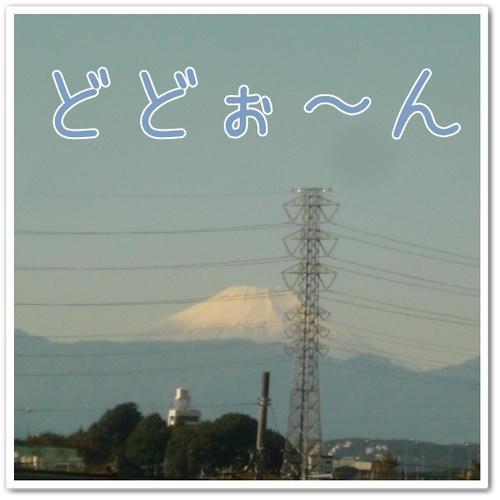P1070045.JPG