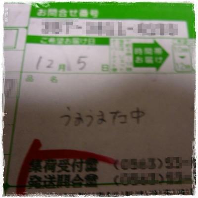 P1070618.JPG