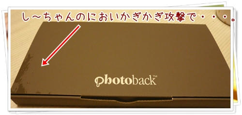 P1080387.JPG