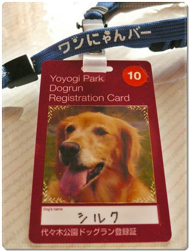 Registration cardCard