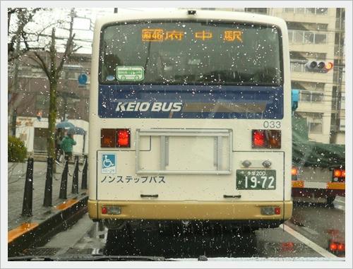 バスを撮りたかったわけではありません。