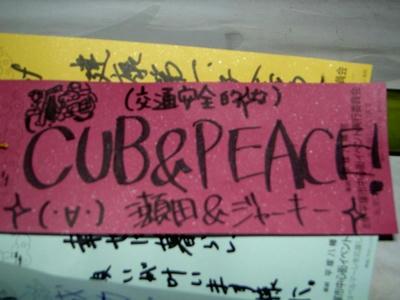 CUB & PEACE