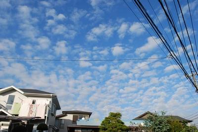 2008111506.jpg