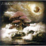 Amazing Maze.jpg