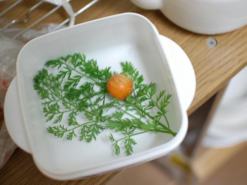 ベランダ菜園 ミニニンジン