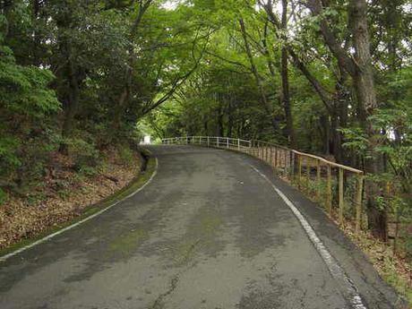 東山ドライブコース