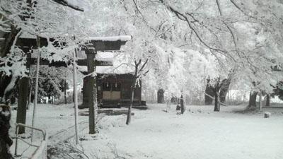 20110819_1.jpg
