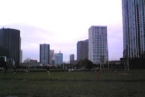 東京海洋大海鷹祭