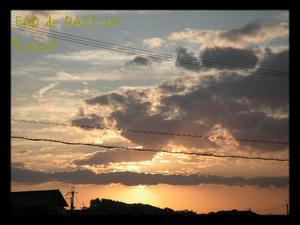20090911c.jpg
