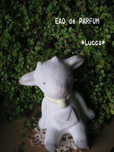 20100304a.jpg