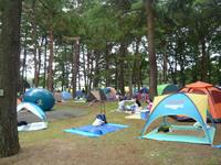 テントの森