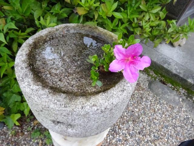 璉珹寺の庭