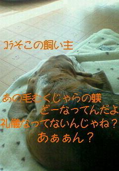 201001131206000.jpg