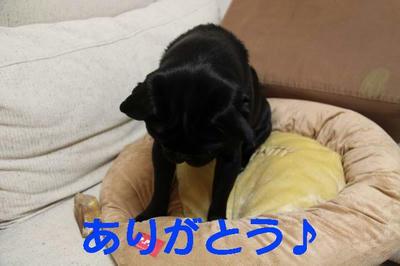 090103102.JPG