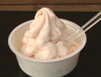 11月3日行列のできるアイスクリーム①