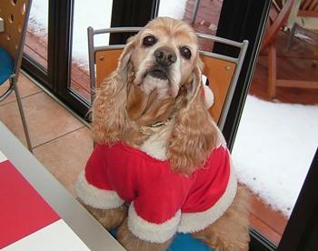 12月23日クリスマス会①