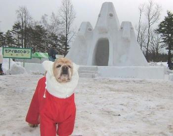 2月3日小岩井雪祭り♪モアイ像のひみつ