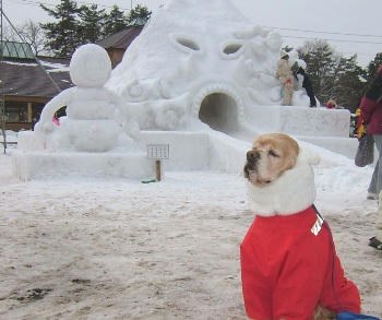 2月3日小岩井雪祭り♪???の滑り台