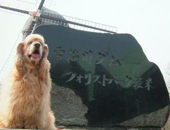5月5日雪谷川ダムフォリストパーク・軽米