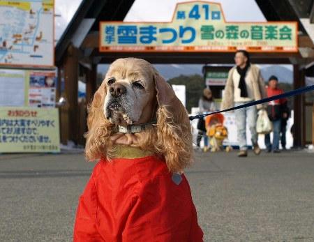 2008小岩井雪まつり①