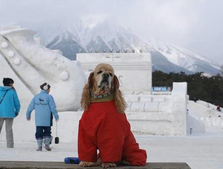 2008小岩井雪まつり②