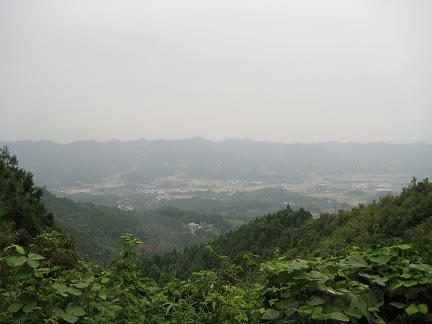 林道嶺岡中央1号線