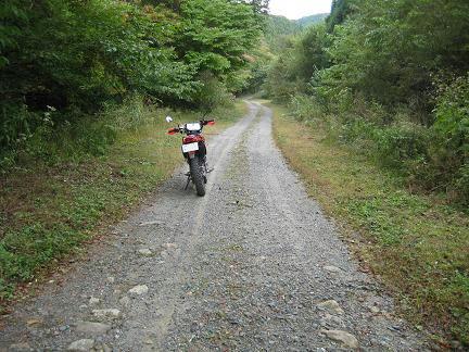 七ツ滝柳沢林道