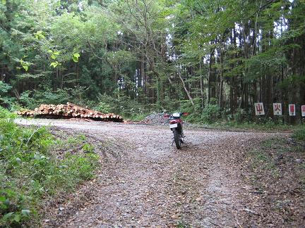 花園林道分岐