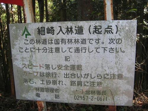 細崎入林道