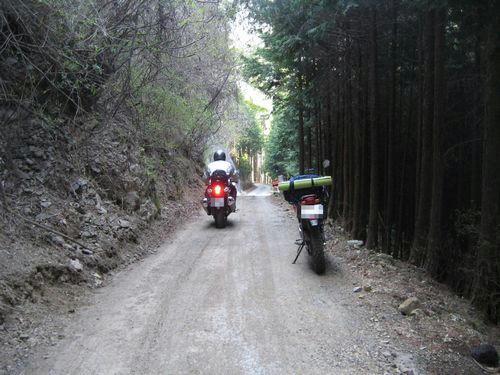 奈良 県道48号線