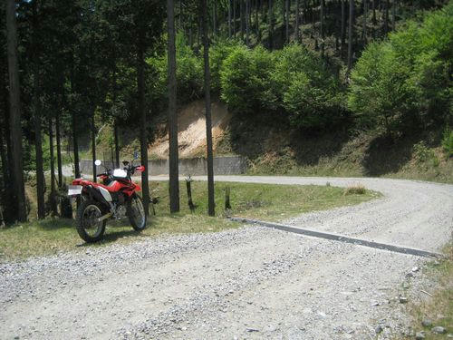 泉水横手山林道