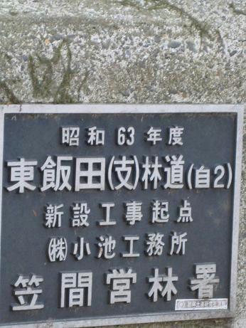 東飯田林道