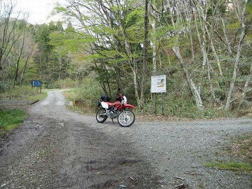 銅山林道支線