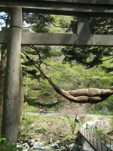 三森山登山口の神社