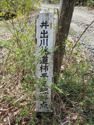 井出川林道柿平支線終点