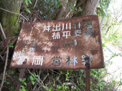 井出川林道柿平支線