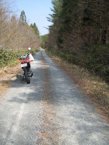 葛尾村の林道