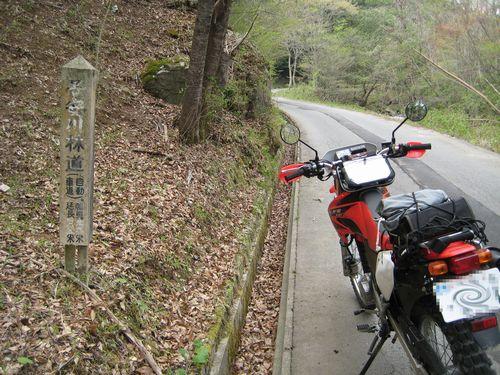 子安川林道