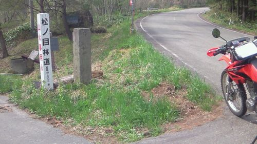 松の目林道