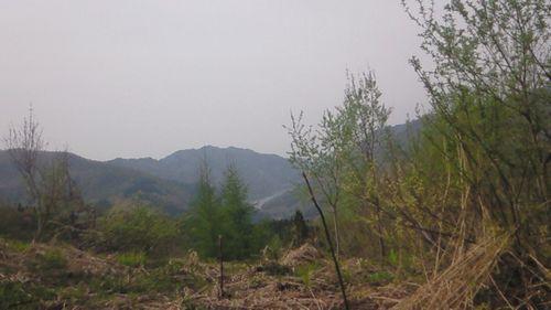 東山ダム方面
