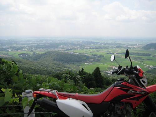 県道199