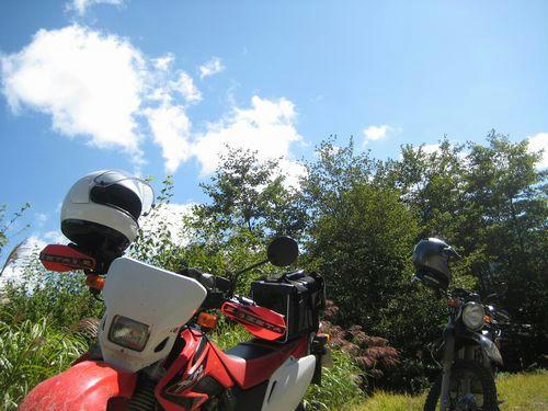 栗原川林道から見た空