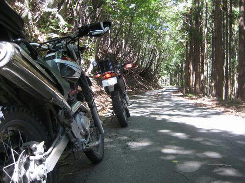 小中西山林道